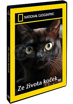 NATIONAL GEOGRAPHIC: Ze �ivota ko�ek