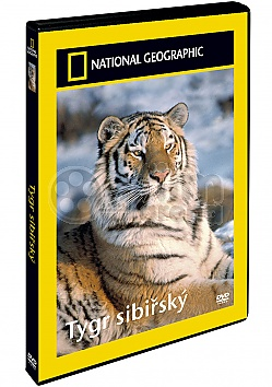 NATIONAL GEOGRAPHIC: Tygr sibiřský